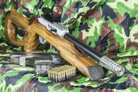 carbine: .22 LR semi automatic carbine Stock Photo