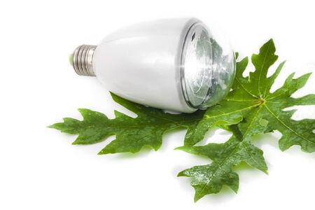 Light bulb for the Green world led recharger photo