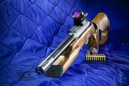 .22 LR semi automatic carbine Stock Photo