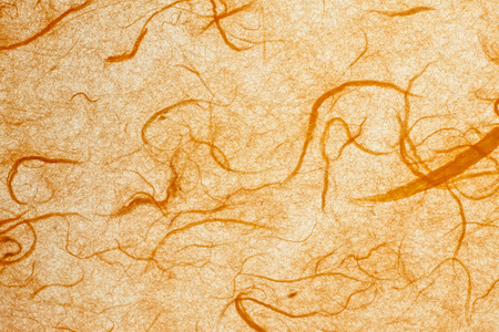 mulberry paper: Orange mulberry paper.