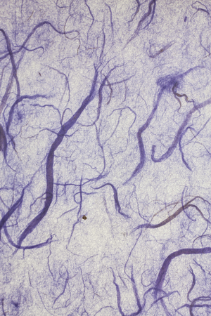 mulberry paper: Blue mulberry paper.