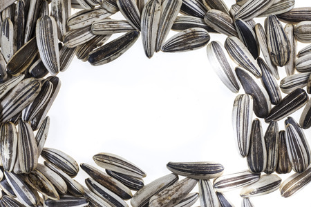 Sunflower seeds on white background. Stock Photo