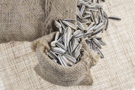 sacks: Sunflower seeds in sacks.