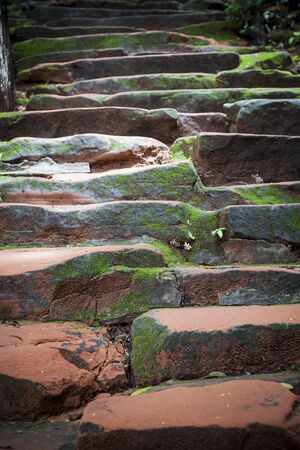 weeds: Moss and weeds on rock staircase. Stock Photo