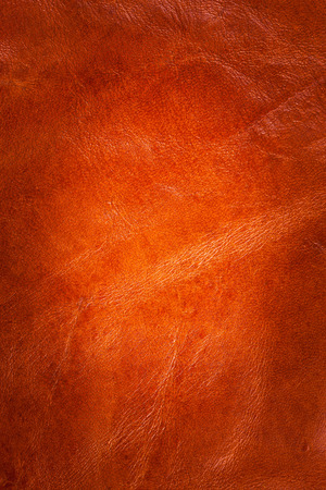 manuscript: Brown  leather background.