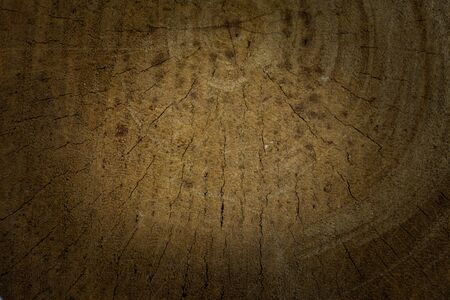 wood surface: The surface old wood for background.