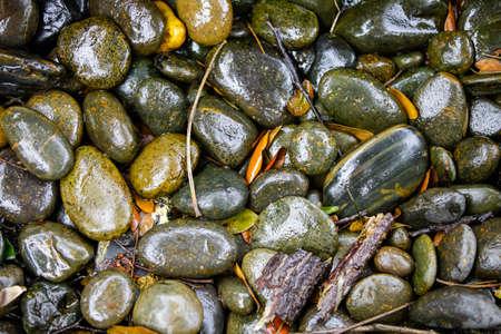 pebble: Pebble on the ground.