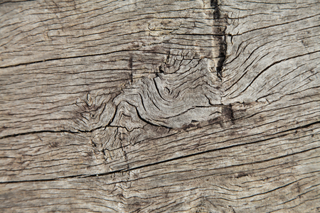 wood surface: Old wood surface weathering