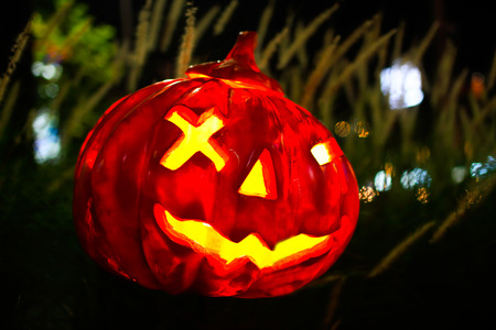 Halloween pumpkin head jack lantern in the night. Stock Photo