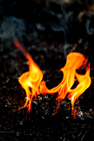 Flame fire movement. Stock Photo