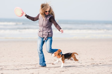 Girl playing with her beagle puppy  on beach Stock Photo