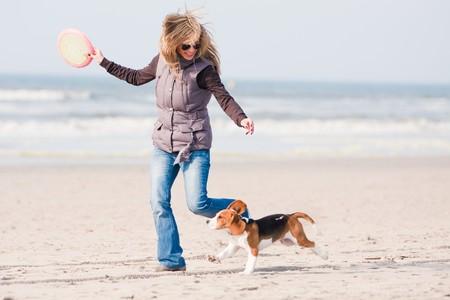 Mädchen spielen mit Ihrem Beagle Hund am Strand  Standard-Bild - 6882155