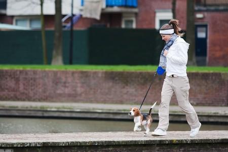 dog on leash: Chica caminando con su perro en la correa. Cachorro Beagle  Foto de archivo