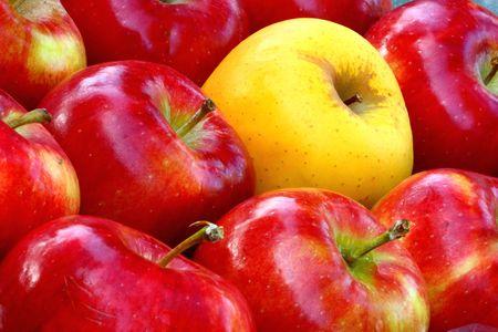 apples photo