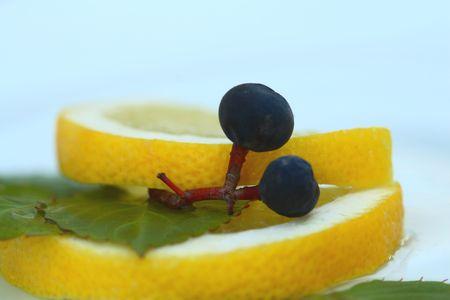 De stengel van druiven op de citroen  Stockfoto - 2155039