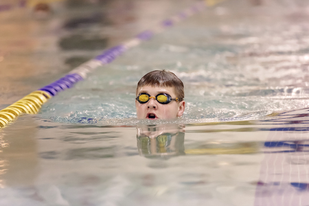 freestyle: Young swimmer practicing freestyle in swimming pool before competition. Stock Photo