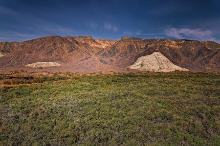 californian: One of few oasis with water and green plants in Death Valley, California. Stock Photo