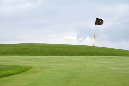 flag on a golf green - hole 7 Stock Photo - 723813