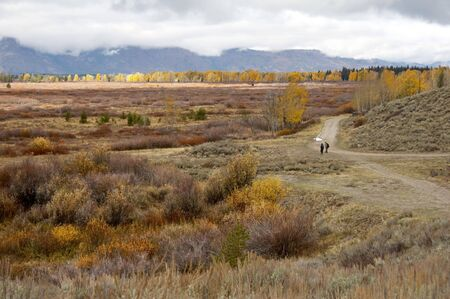 Beautiful landscape in Grand Teton National Park, Wyoming, USA photo