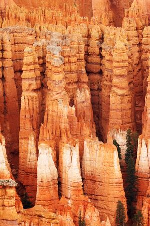 tinge: Amphitheater - Bryce Canyon National Park, Utah, USA