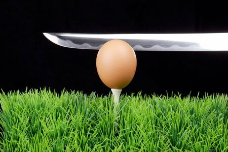 Single Easter Egg on a golf tee at the fairway, black background, long sward behind photo