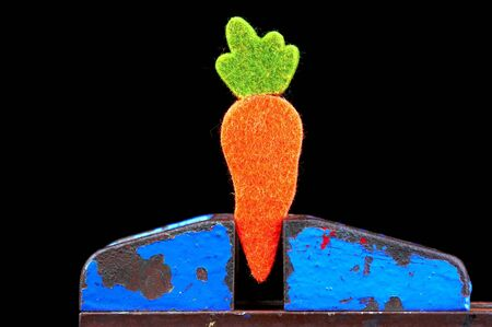 clamped: orange carott  made of felt clamped in a vice - on black background