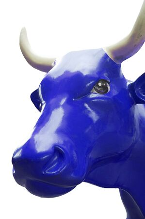 farbe: synthetic blue cow
