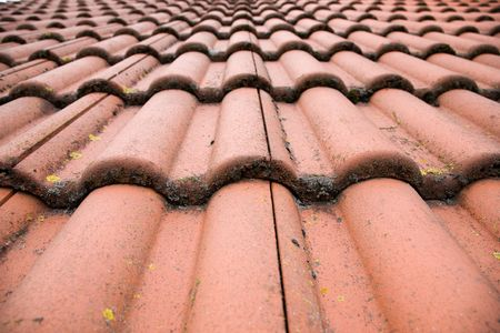 smut: Red pantile Stock Photo