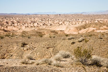 desiccated: Desert zone in Valley of fire near Overton, Lake Mead, Nevada, USA Stock Photo