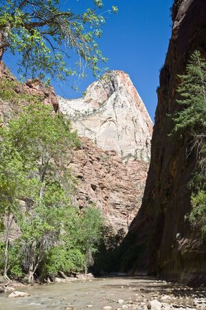 boles: Zion National Park is located in the Southwestern USA, near Springdale, Utah Stock Photo