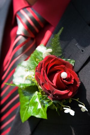 buttonhole: Red rose as buttonhole