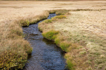 meadowland: dersch meadows, Lassen Volcanic National Park in California, USA Stock Photo