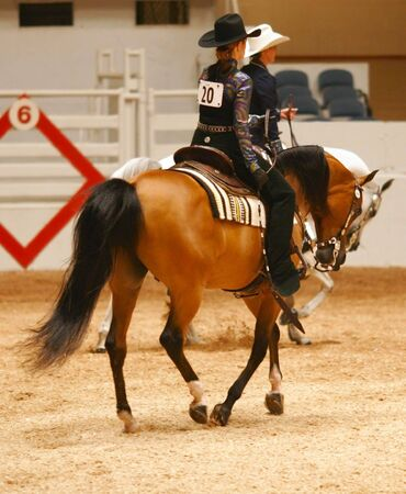 riding: Loping at the horse show Stock Photo