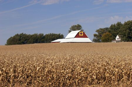 hex: Red barn with hex sign in a corn field