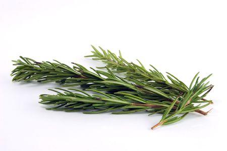 Rosemary photo
