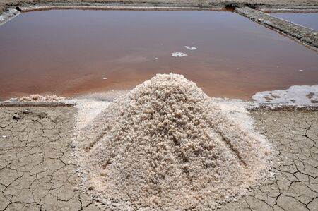 salinity: Pile of salt harvested from a pond