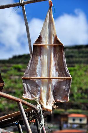scabbard: Black Scabbard drying in  the sun