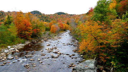 Foliage in New Hampshire USA Stock Photo