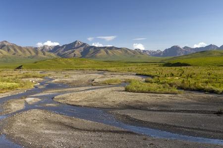 denali: savage creek in denali national park