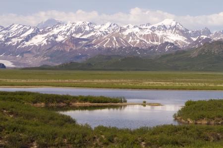 tundra in alaska Stock Photo