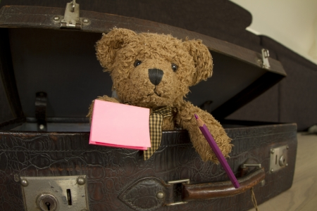 bear in suitcase holding pencil and notebook Stock Photo