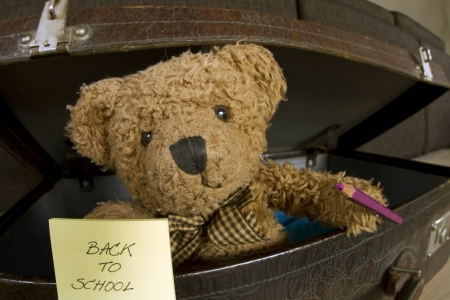 bear with pencil and notebook announcing back to school