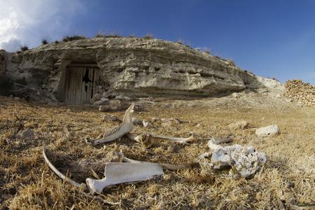 bones in front of cave house Reklamní fotografie