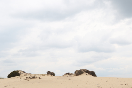 text room: Cloudy sky above a sandy dune rim with room for text Stock Photo