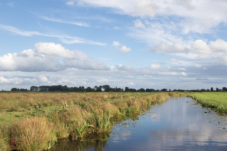polder: Typical polder canal near farmland with sheep in The Netherlands
