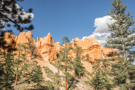 View from Navajo Trail in Bryce Canyon National Park, UT