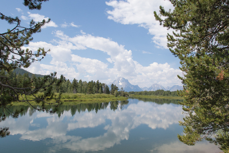 Oxbow Bend on the Snake River, Grand Teton