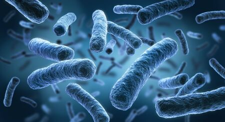 Legionella - Ilustración 3D de bacterias Foto de archivo