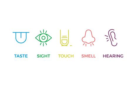 5 menschliche Sinne Illustrationen. Schmecken, sehen, berühren, riechen, hören. Zunge, Auge, Finger, Nase und Ohr. Vektor trendige dünne Linie Symbol Piktogramm Designs in verschiedenen Farben