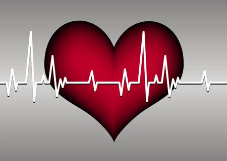 heart and cardiogram Vector